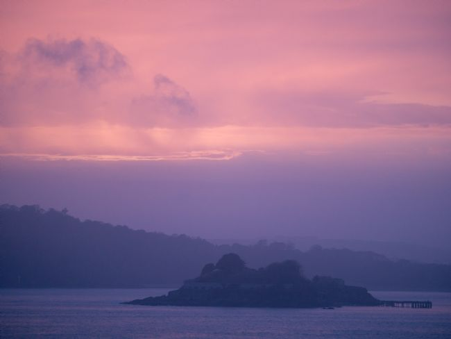 Jon Rendle | Drake's Island Purple Haze