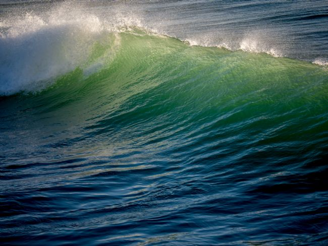 Jon Rendle | The Green Wave