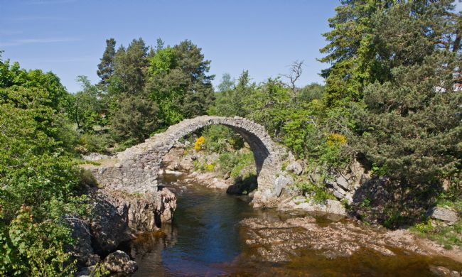 Liz Alderdice | The Bridge at Carrbridge