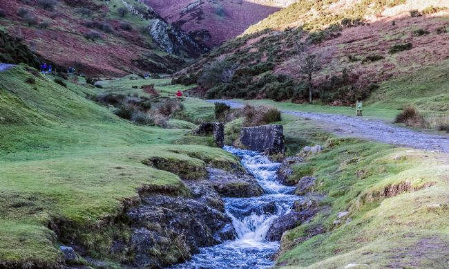 Garry Downs | carding mill valley
