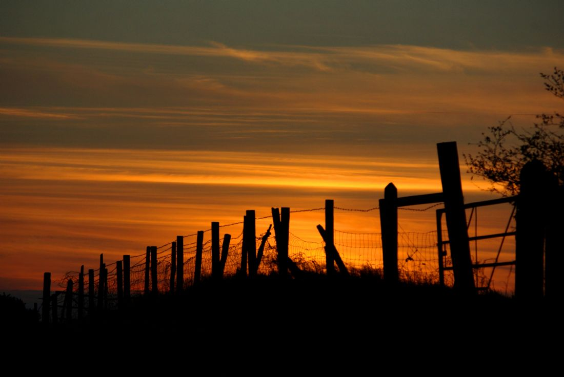 Peter Hemington | Sunset through the fence