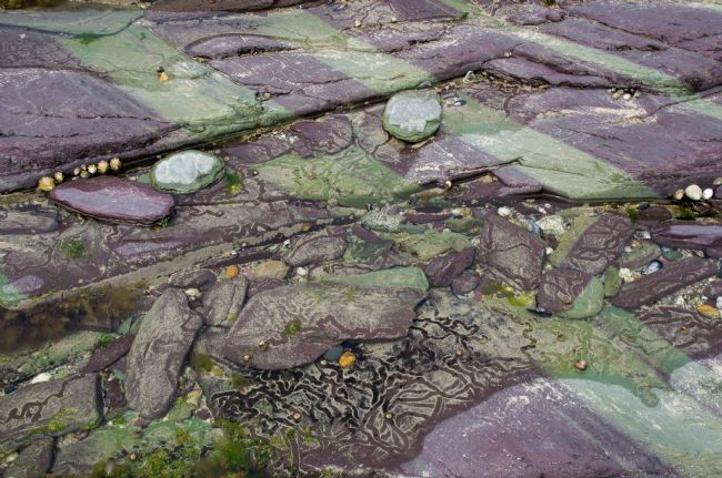 Peter Hemington | Colourful rocks near Polzeath