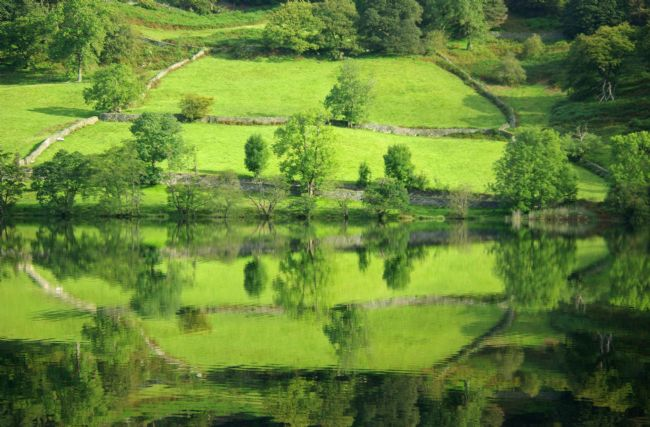 Peter Hemington | Rydal Water
