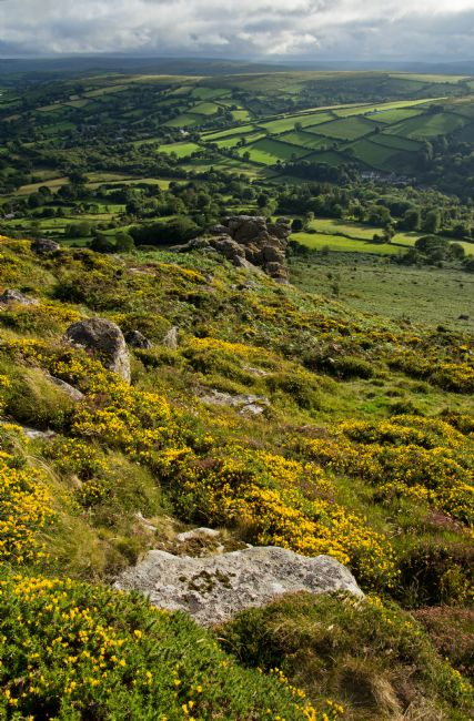 Peter Hemington | Gorse, Tors and Fields