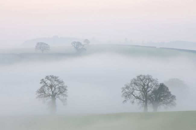 Pete Hemington | Misty Devon Morning