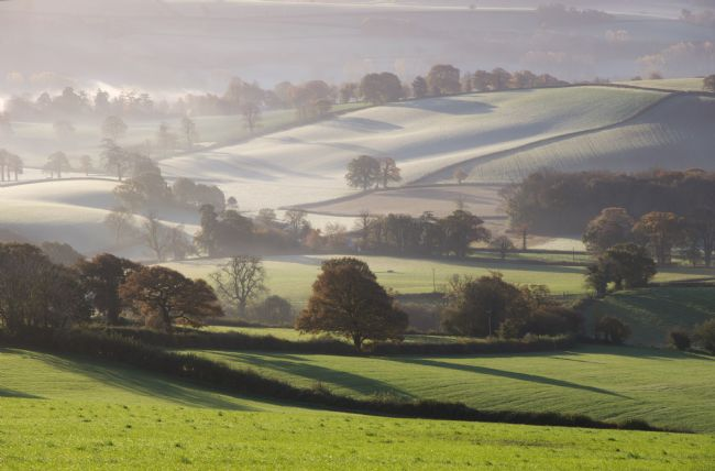 Peter Hemington | Mid Devon over the Culm Valley