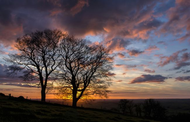 Pete Hemington | Raddon Hill in Mid Devon