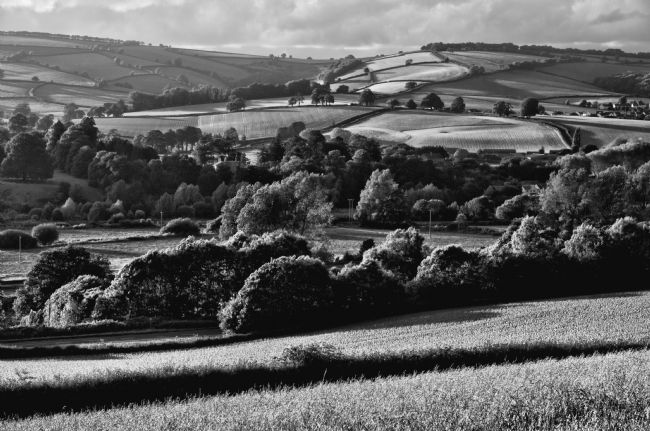 Peter Hemington | Hills around the Culm Valley