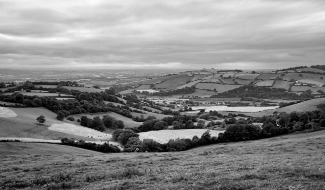 Pete Hemington | The Exe valley