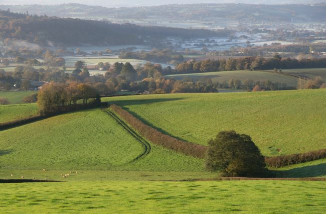 Peter Hemington | Mid Devon in the Exe valley area