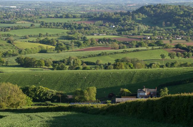 Pete Hemington | Mid Devon farmland