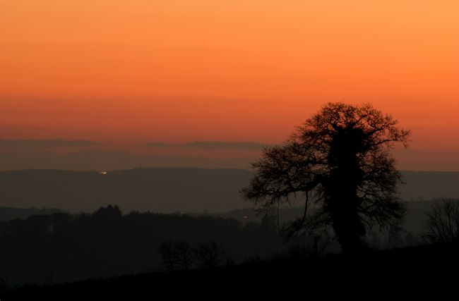 Peter Hemington | Lone tree and Mid Devon sunset