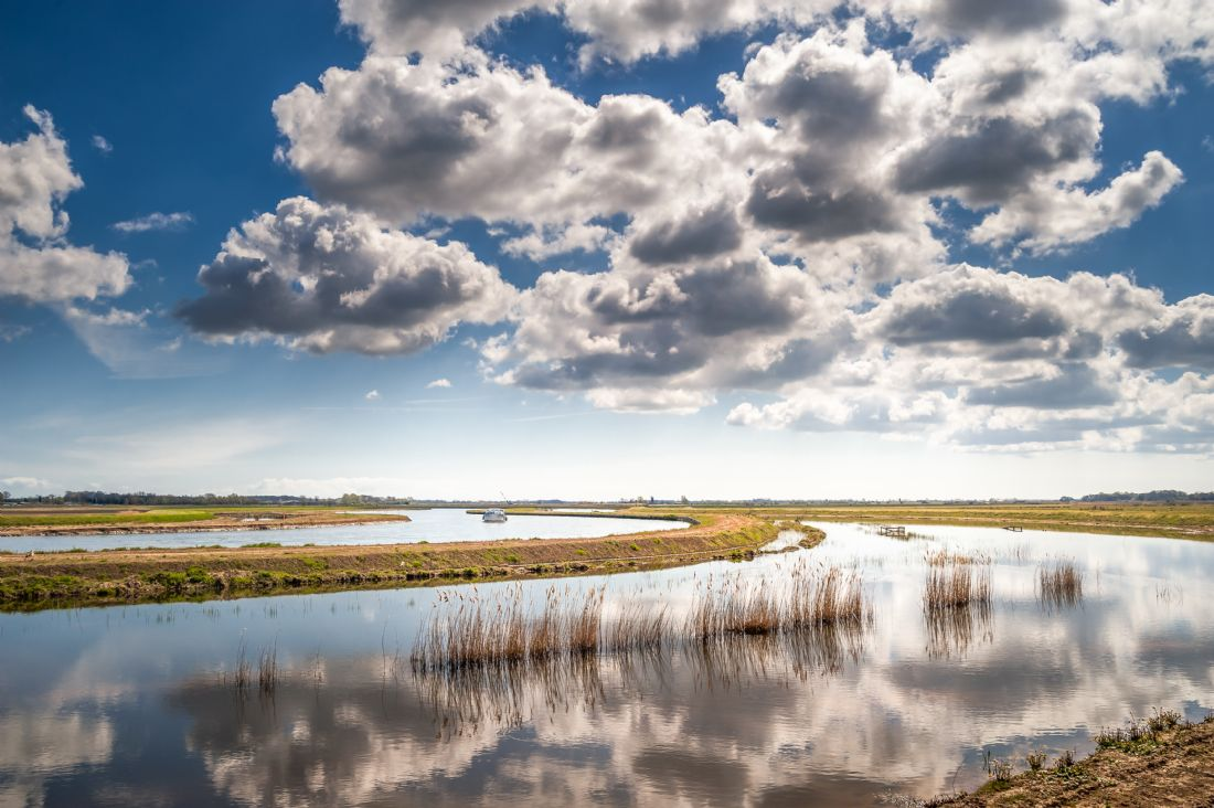 Stephen Mole | Rivers Bure and Thurne