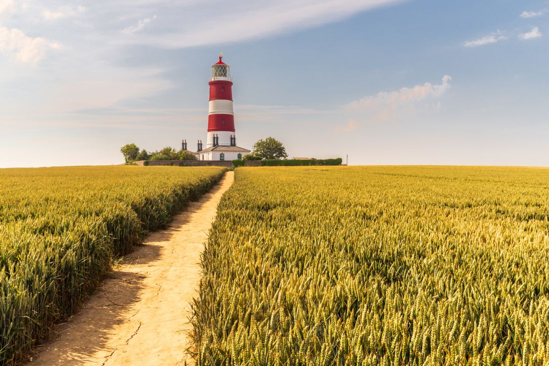 Stephen Mole | Pathway to Happisburgh Lighthouse