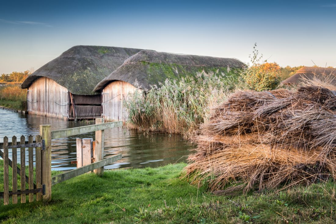 Stephen Mole | Thatched Boat Houses
