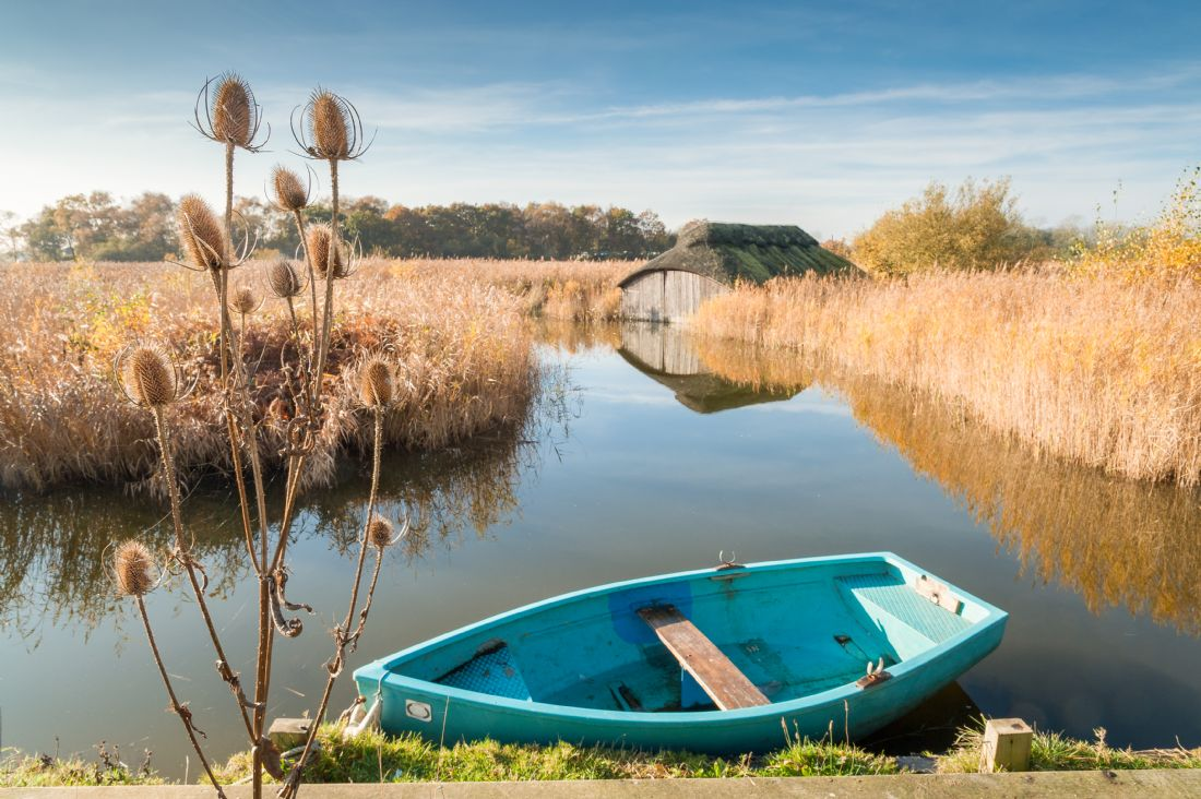 Stephen Mole | Teasal, boat and boat shed