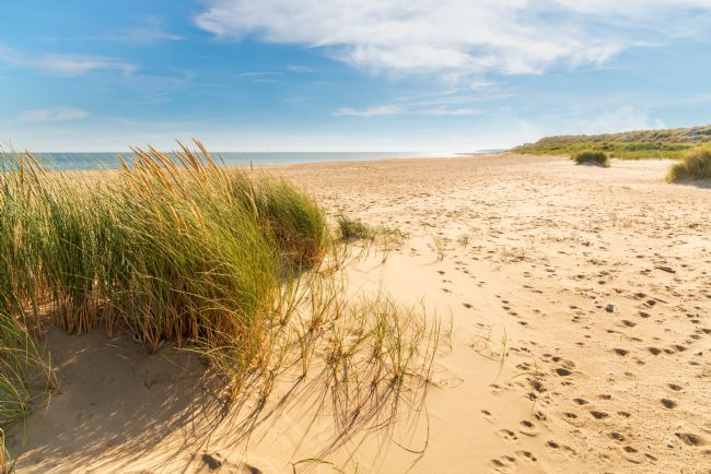 Stephen Mole | Winterton Beach in the dunes