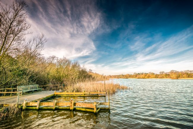 Stephen Mole | Rollesby Broad