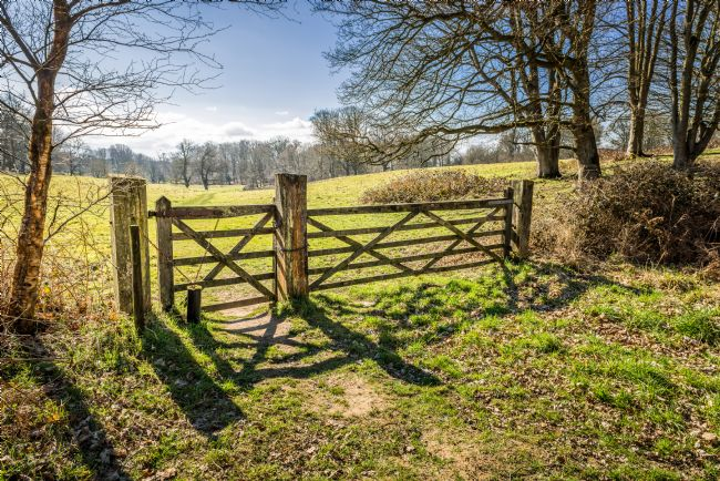 Stephen Mole | 5 bar gate at Felbrigg