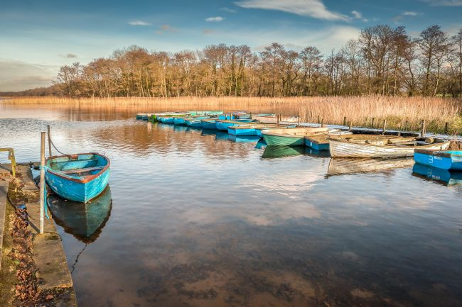 Stephen Mole | Boats at Filby