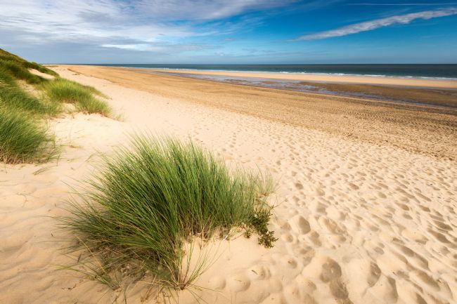 Stephen Mole | North Winterton Beach