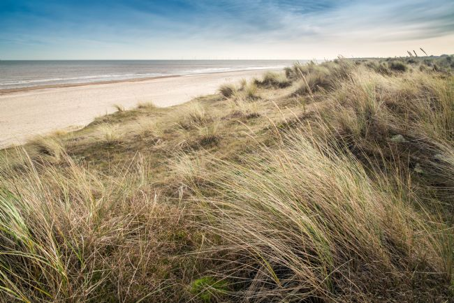 Stephen Mole | Dunes at Winterton