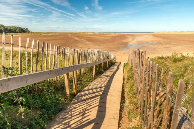 Stephen Mole | Boardwalk at Holkham