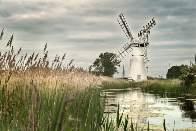 Stephen Mole | Thurne