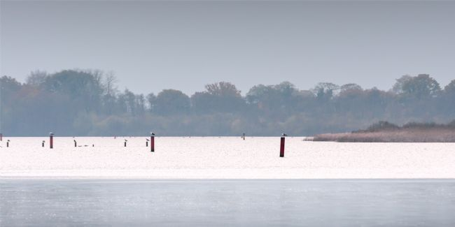 Stephen Mole | Barton Broad on the Norfolk Broads
