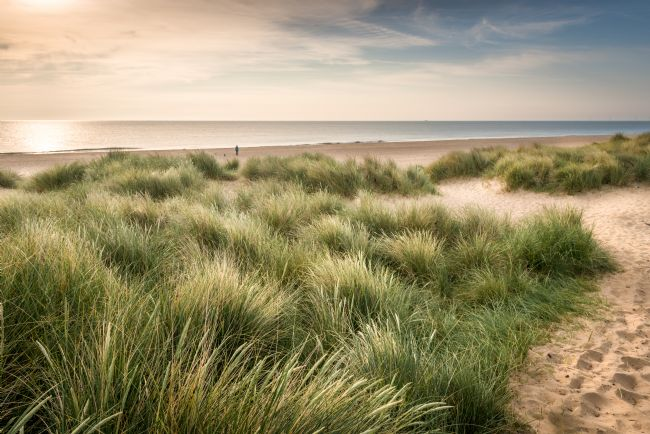 Stephen Mole | Wnterton dunes and beach