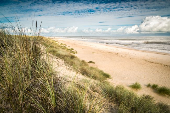 Stephen Mole | Winterton Beach