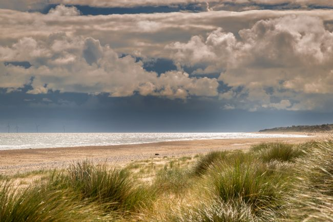 Stephen Mole | Through the Dunes at Winterton Beach