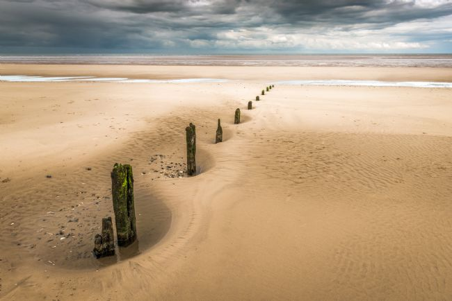 Stephen Mole | Stumps at Brancaster