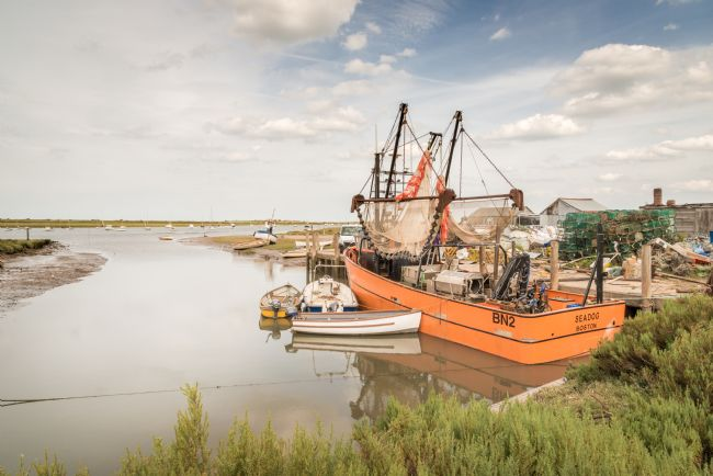 Stephen Mole | Sea Dog at Brancaster Staithe