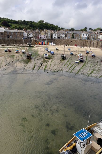 roz collins | Mousehole Harbour