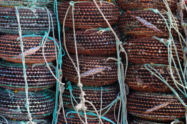 Roz Collins | Fishing Pots, Angeiras, Portugal