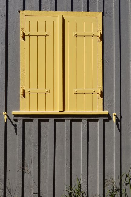 Roz Collins | Yellow Shutters, Le Canon, France