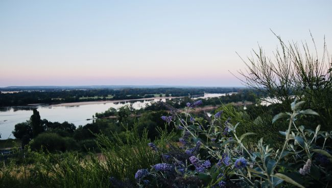 roz collins | Dusk over the River Loire
