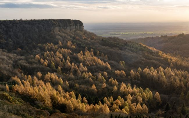 Richard Burdon | Autumn Colour at Sutton Bank