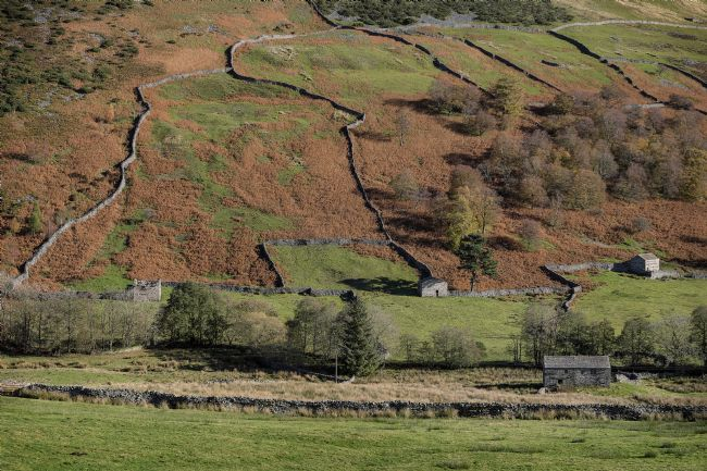 Len Pugh DPAGB | Yorkshire Dales - Upper Swaledale