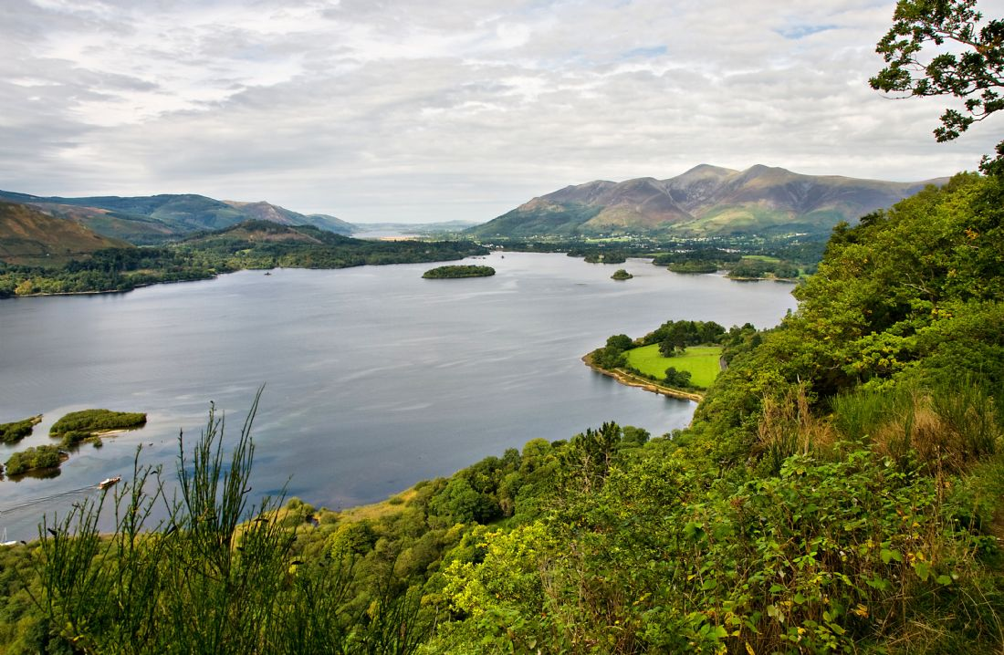 Jacqi Elmslie | Surprise View Derwentwater