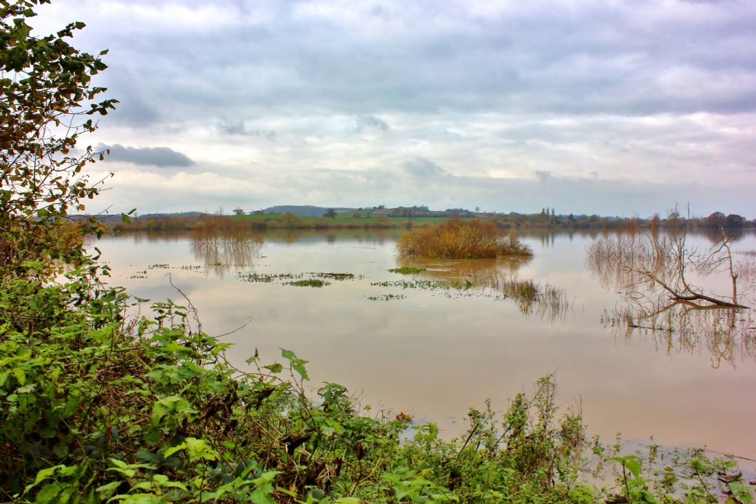 Susan Snow | Flooded River Avon at Tewkesbury