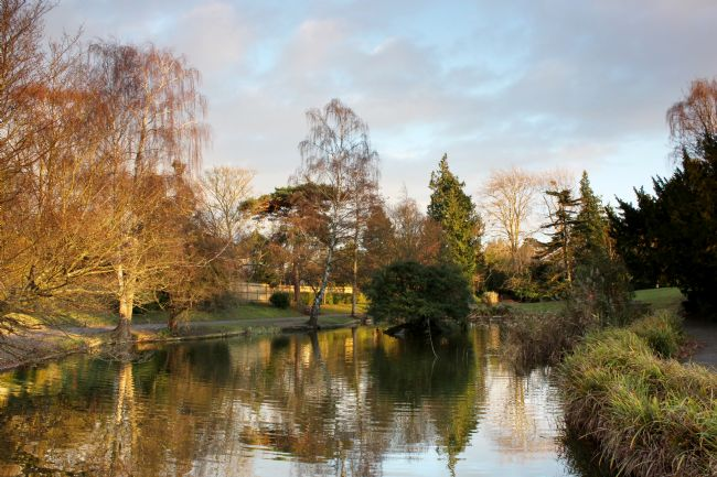 Susan Snow | The Lake at Hatherley Park Cheltenham