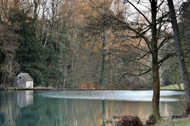 Susan Snow | The Lake at Colesbourne Park Gloucestershire