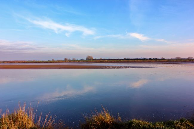 Susan Snow | View across the River Severn from Newnham on Severn