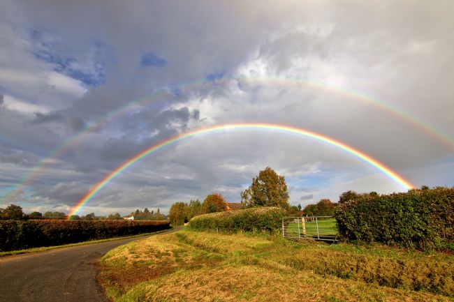 Susan Snow | Double Rainbow