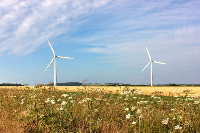 Susan Snow | Wind Turbines in a Field