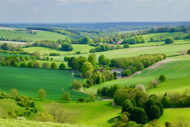 Penny Martin | English Countryside at Combe in Wiltshire