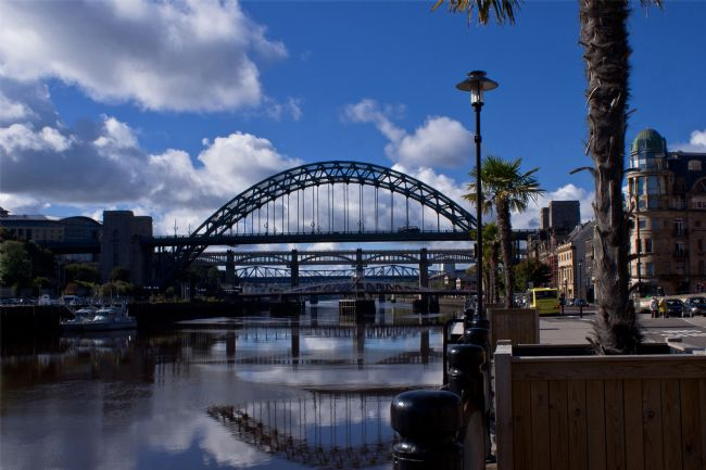 John Ellis | Tropical Tyne