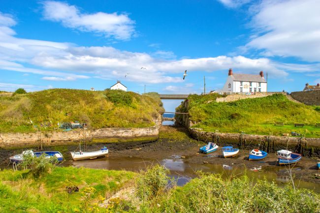 John Ellis | Seaton Sluice Harbour